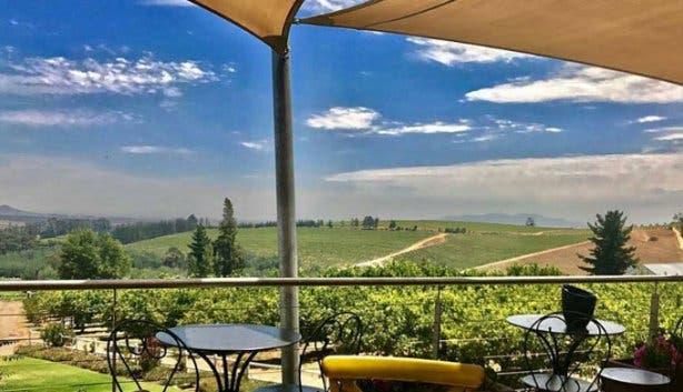 marianne wine estate view 2