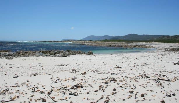 Hi Tec - Cape Point 8