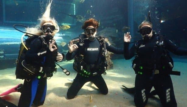 Two_Oceans_Aquarium_Dive_School_Cape_Town