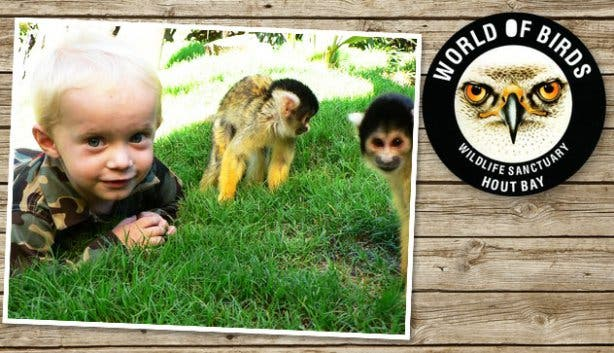 World of Birds kid with monkeys