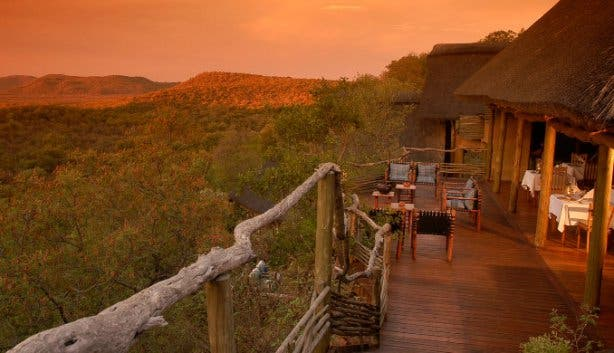 Safari Madikwe Zuid Afrika