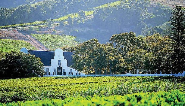 MLT Winelands