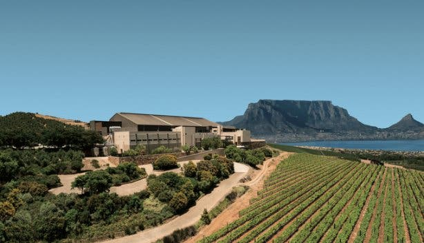 Durbanville Hills wine estate
