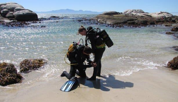 scuba shack - divers