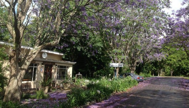 backpackers garden route tour