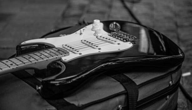 beluga_music2