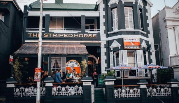 striped_horse_kloof