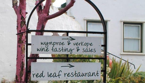 Wine tasting at the Red leaf eatery Beyerskloof