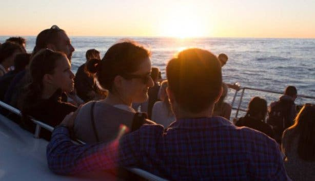 tigger_too_sunset_cruise