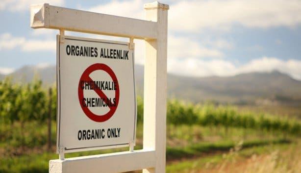 Organic Farming at La Motte Wine Farm