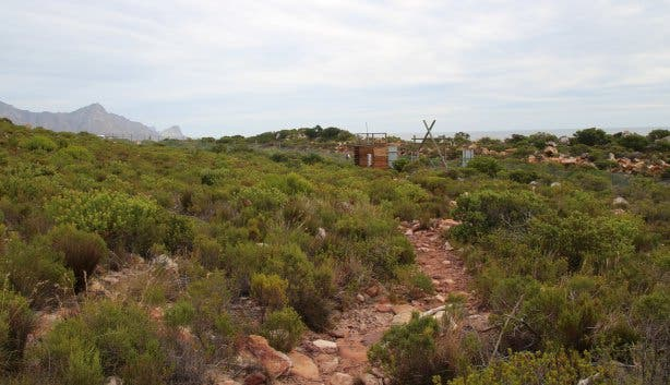Steenbras Nature Reserve