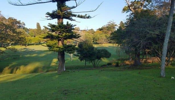 Wynberg-Park