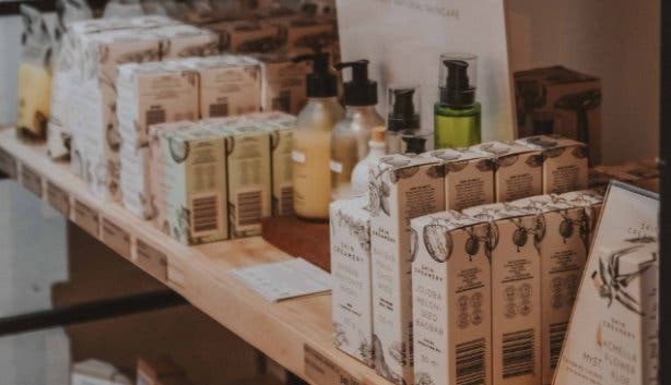 Wildsprout_Kenilworth_Cape_Town