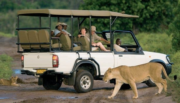 safaripark zuid-afrika
