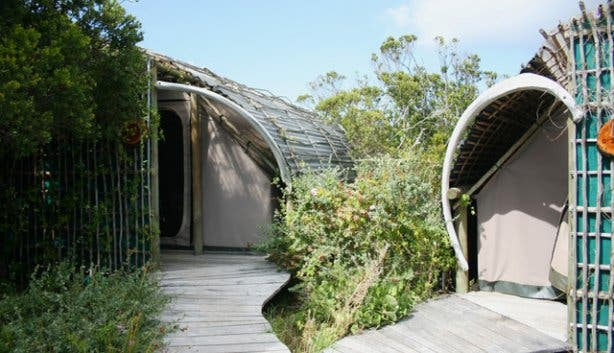 Slangkop San Park Accommodation | Cape Point