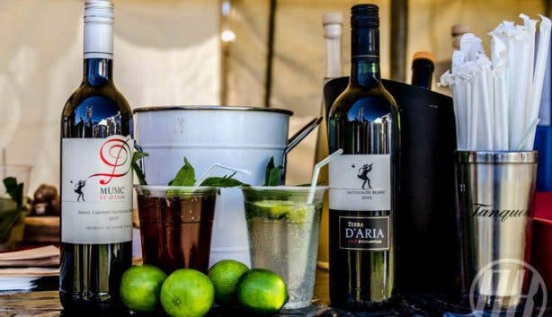 Coco Blush Wine Festival D'Aria Estate 3