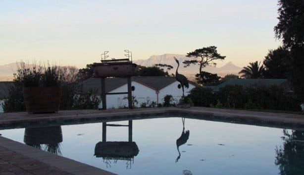 Swimming Pool at Saxenburg Wine Farm Stellenbosch