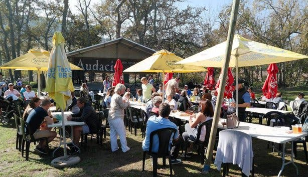 Audacia Wines ROOT44