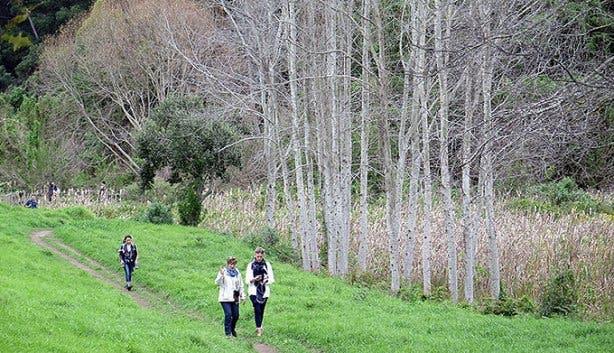 VoiceMap The Elfin Trail 2