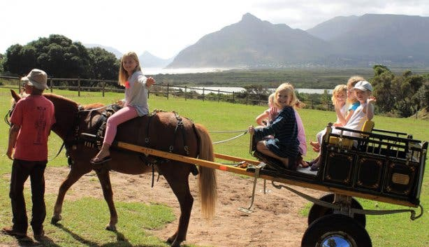 Pony Rides at Imhoff Farm