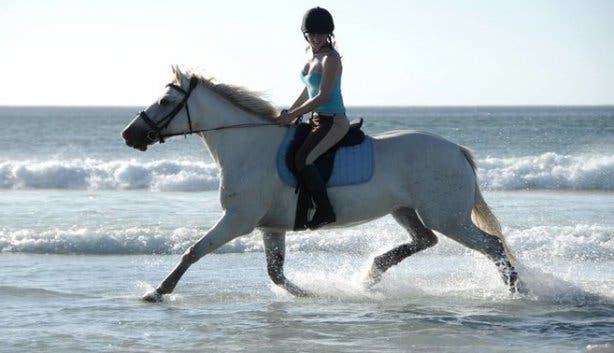 Horse Riding in Cape Town and surroundings