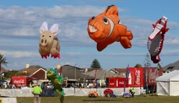 Kite Festival 2021_assorted kites