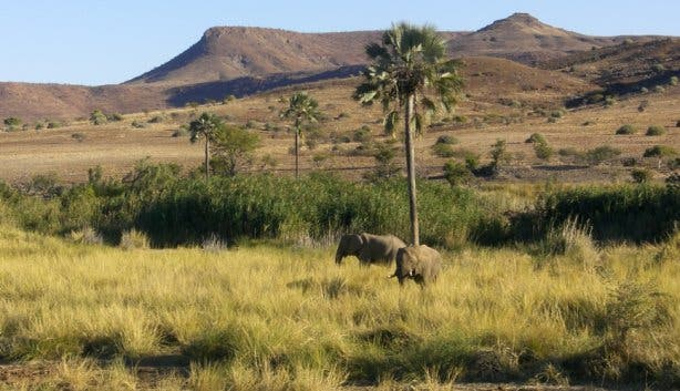 namibia madiba travel