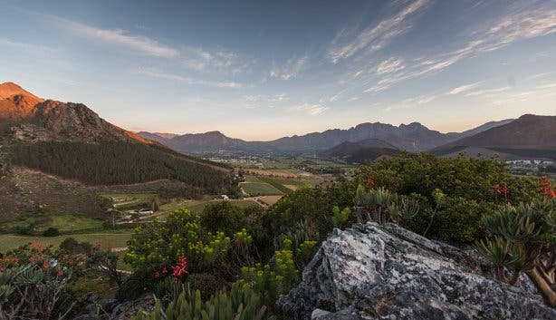 la motte nature reserve franschhoek wine estate