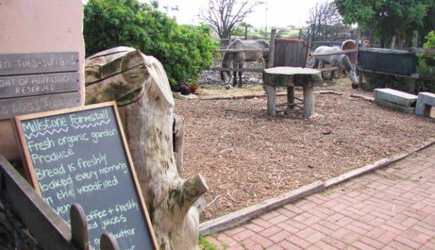 Millstone Farmstall Cafe 8