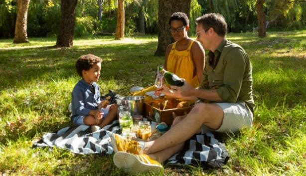 NET Marcus picnic Cape Town Western Cape
