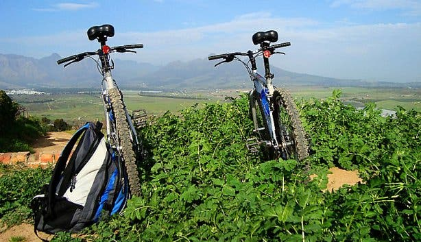 Winelands Daytours 1