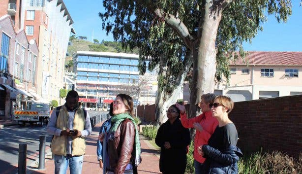 Cape Town Culinary Tours - 2