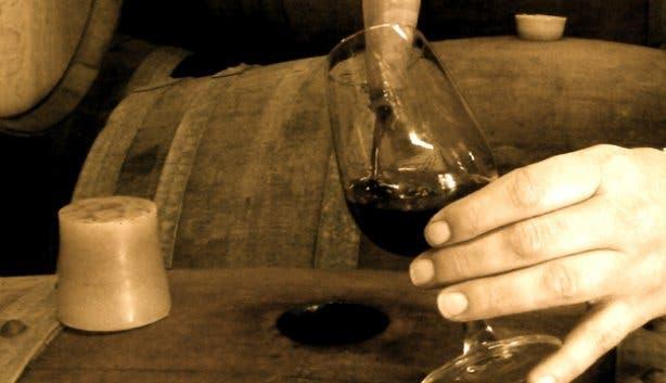 wine thief wine flies