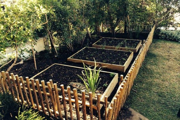 Food gardening course 4