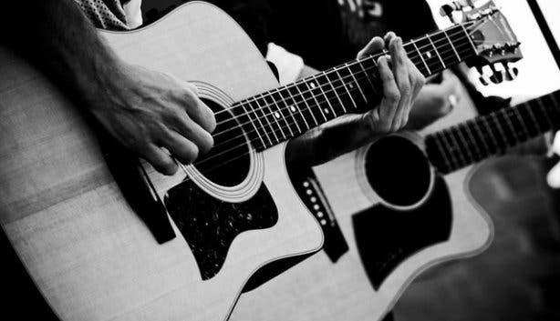 Barleycorn guitars