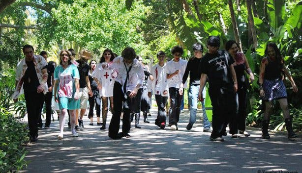 Zombie Walk Cape Town 7