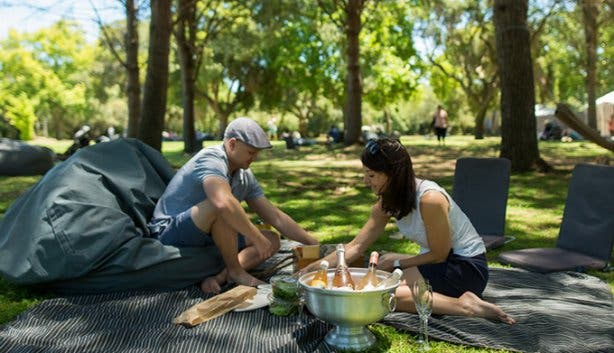 Full Moon Picnic at Boschendal