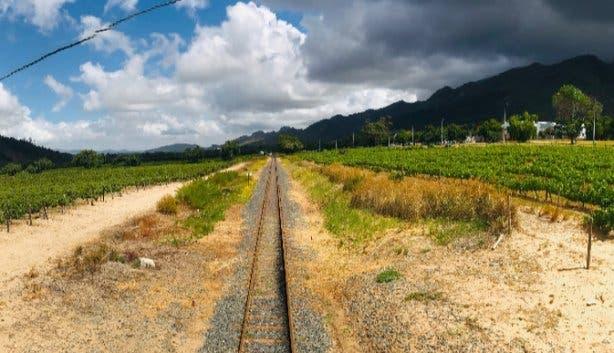 Wine-tram_12