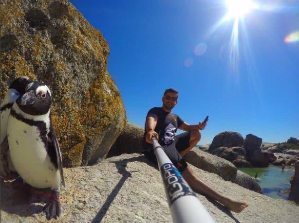 selfie bulders beach pinguins
