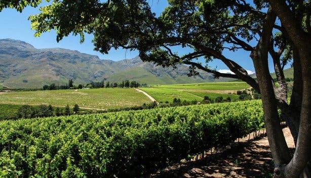 Haskell  Winefarm 1
