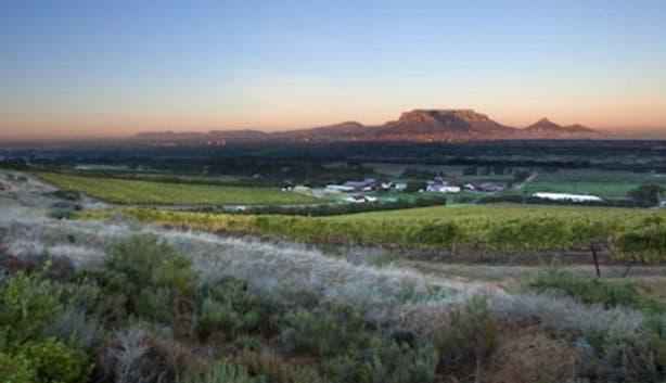 De Grendel Wine Farm View