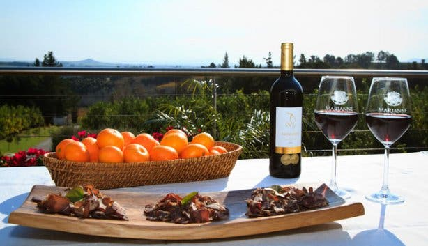 biltong and wine pairing at marianne wine estate