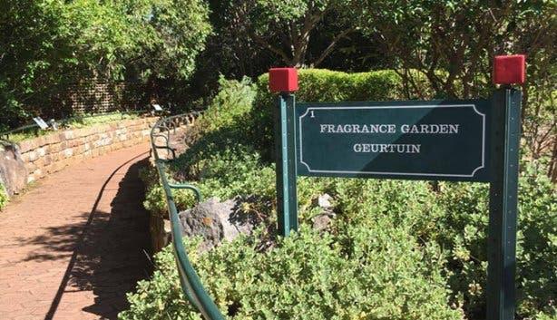 Kirstenbosch - 8