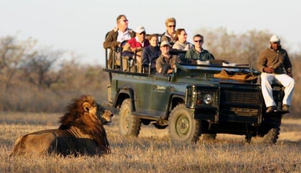 safari zuidafrika krugerpark