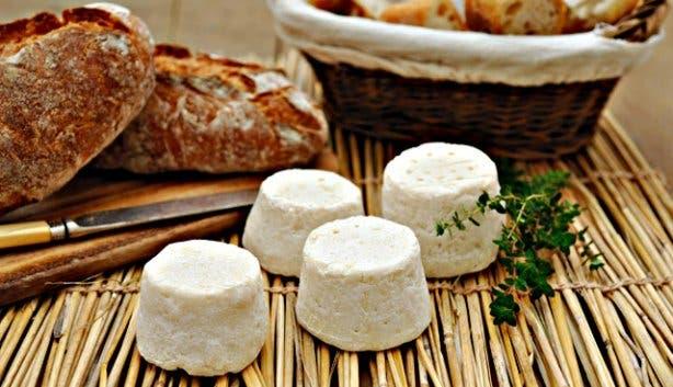 SA Cheese Festival cheeses