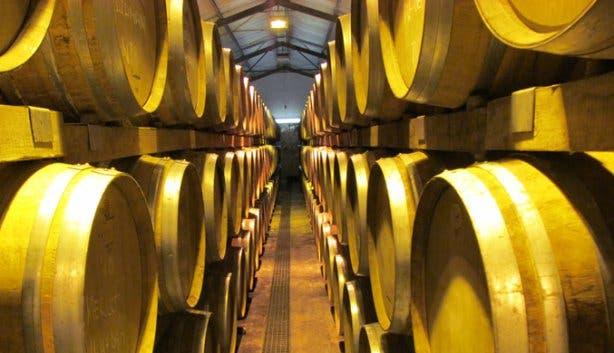 Cellar at Saxenburg Wine Farm Kuils River