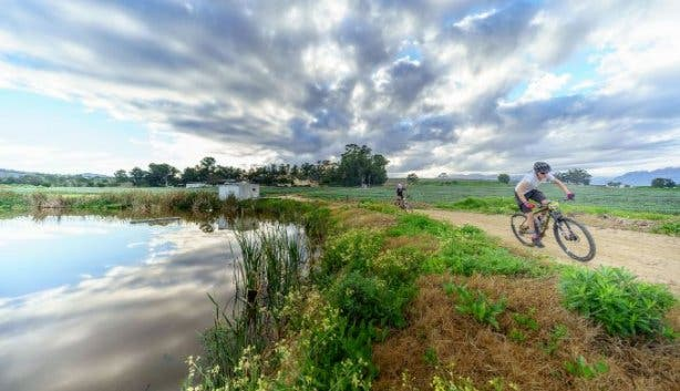 stellenbosch_mtb_challenge