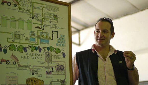 riaan wine flies tour guide