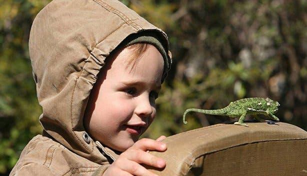 vakantie met kinderen Zuid-Afrika