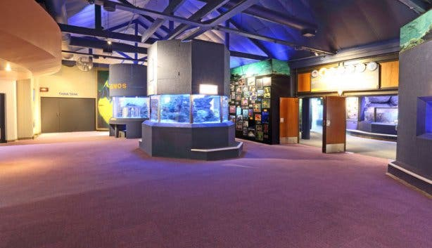 Two Oceans Aquarium Tanks Entrance 3